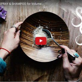 shampoo mit kokosöl